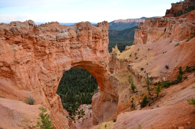 One of my favorites is the Natural Bridge.